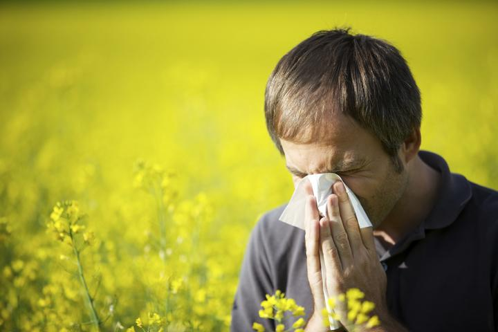 Eigenblut bei Allergien
